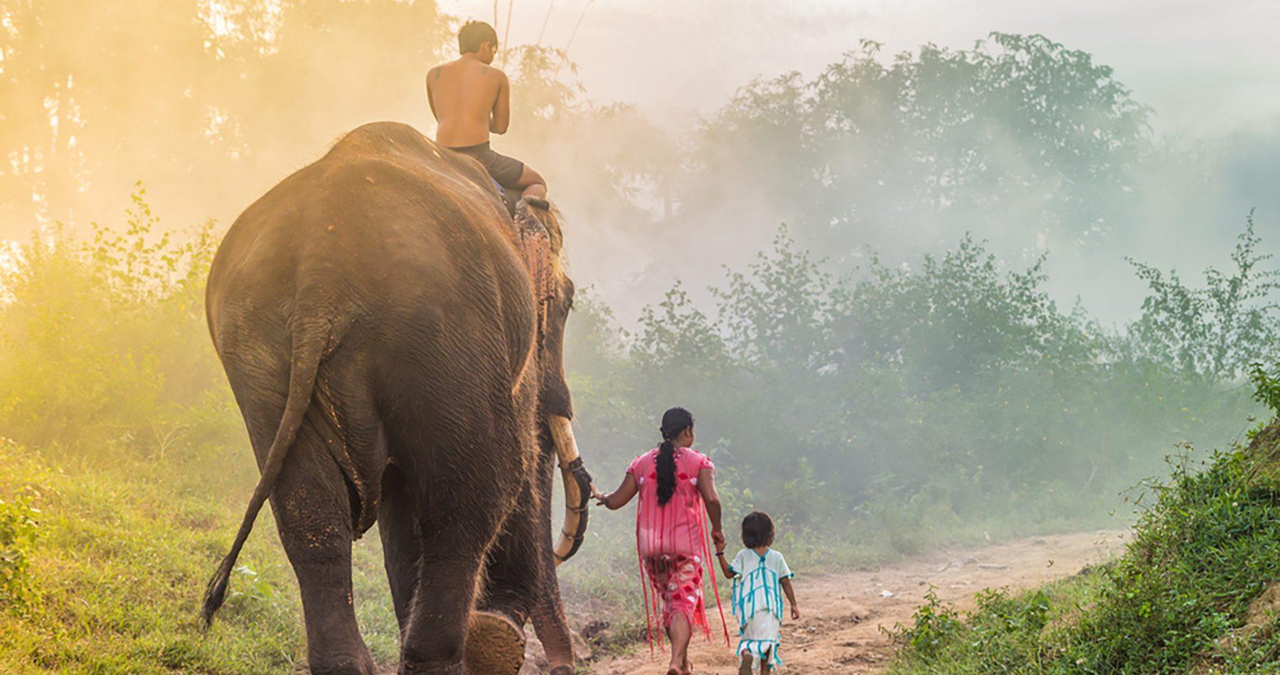 voluntariado-elefantes-tailandia-yumari